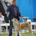 Šunų paroda