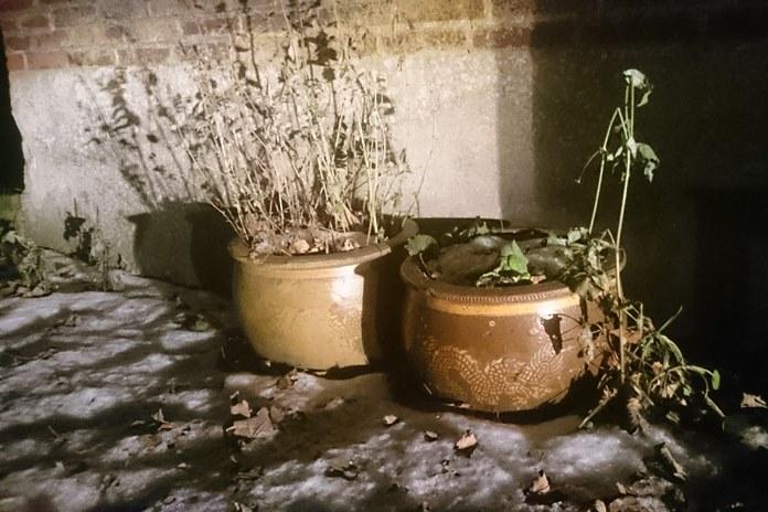 Šiandien Lietuvoje daugelyje rajonų krituliai: sniegas, vietomis šlapdriba, lietus